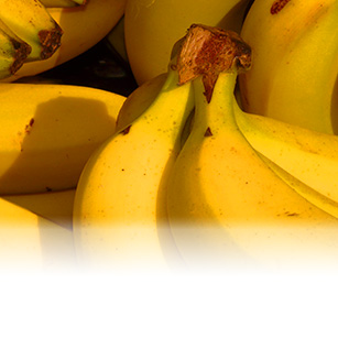 How to keep bananas fresh for longer.
